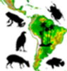 Network for Neotropical Biogeography
